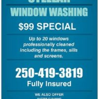 window washing/gutter cleaning/pressure washing/house washing (Nanaimo)